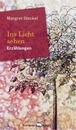 web-ins-licht-sehen-cover
